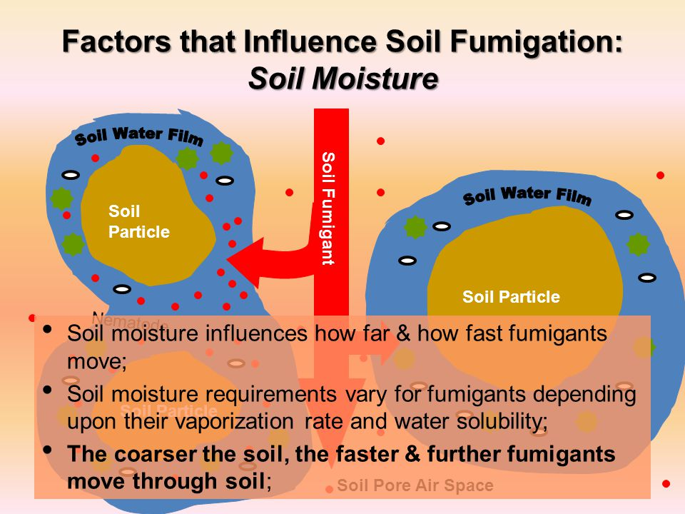 Factors that Influence Soil Fumigation: Soil Moisture