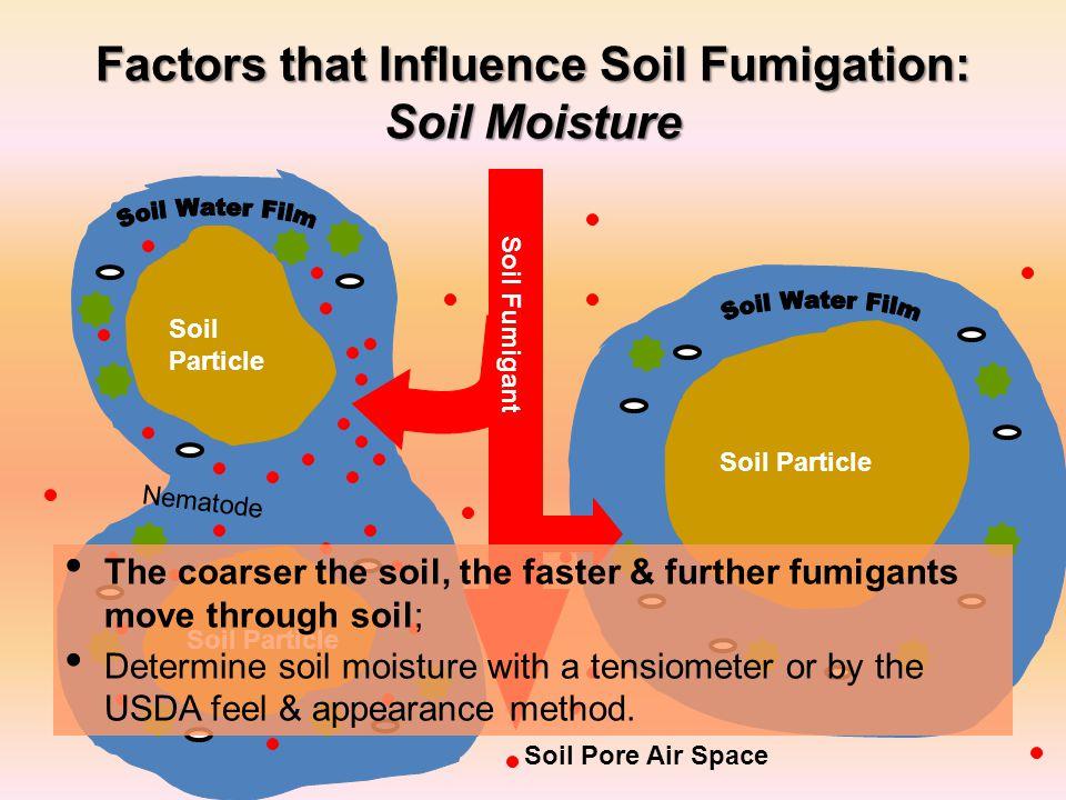 Factors that Influence Soil Fumigation: Soil Moisture