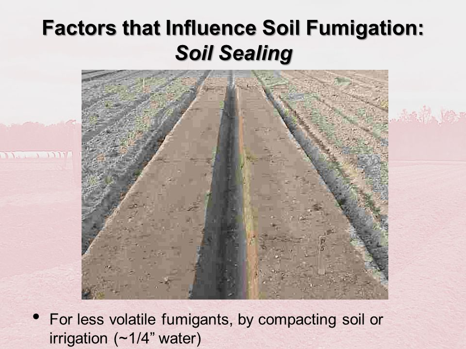 Factors that Influence Soil Fumigation: Soil Sealing