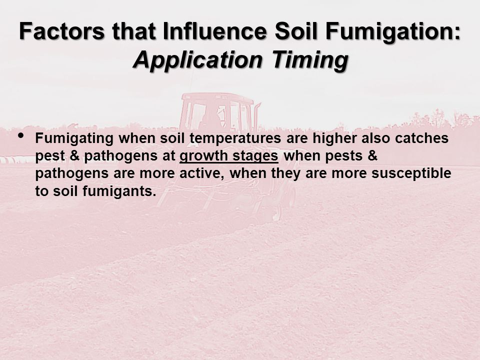 Factors that Influence Soil Fumigation: Application Timing