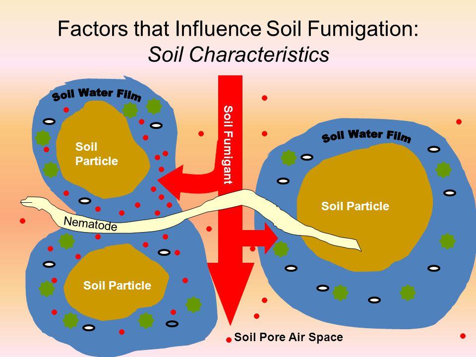 Factors that Influence Soil Fumigation: Soil Characteristics