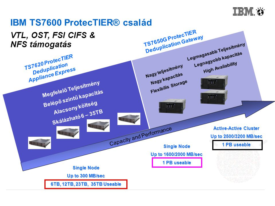 IBM TS7600 ProtecTIER® család