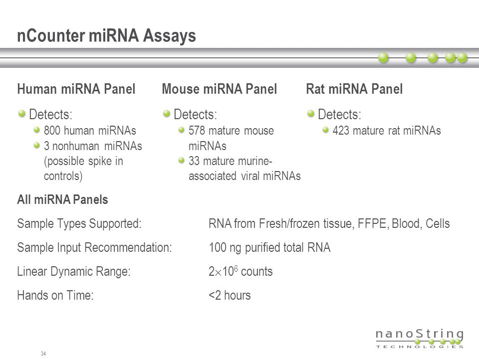 nCounter miRNA Assays Human miRNA Panel Mouse miRNA Panel