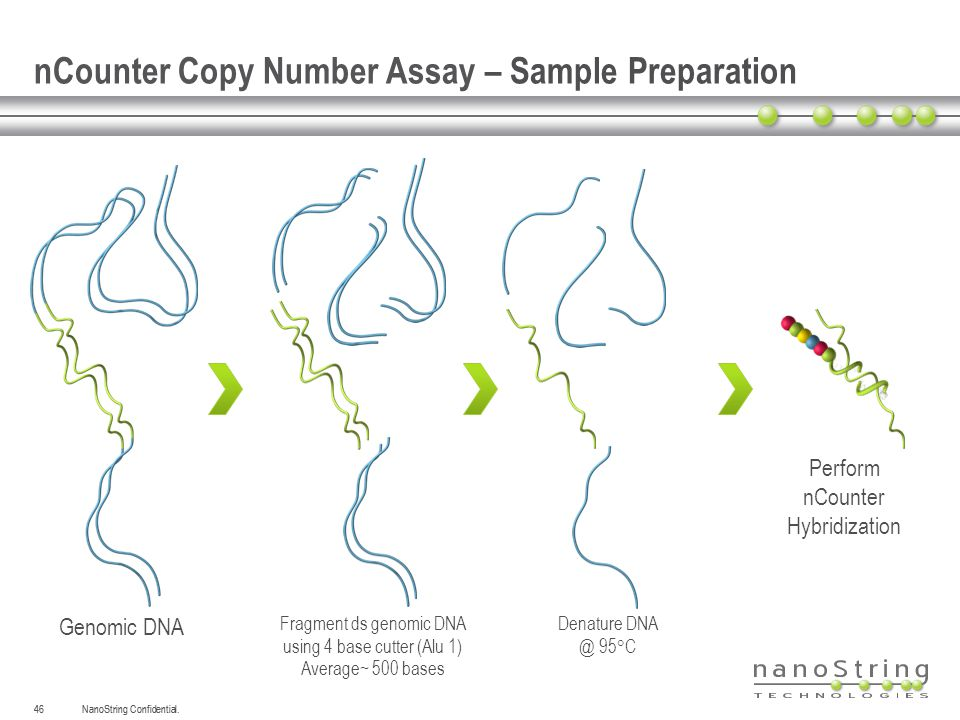nCounter Copy Number Assay – Sample Preparation