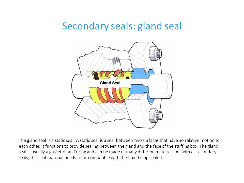 Secondary seals: gland seal