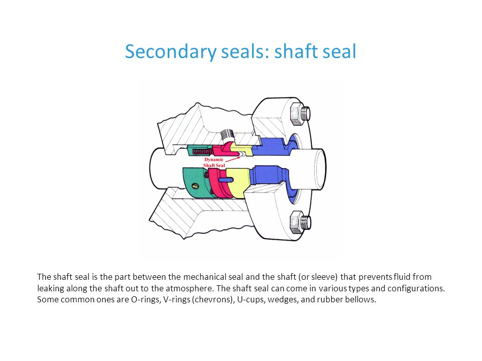 Secondary seals: shaft seal