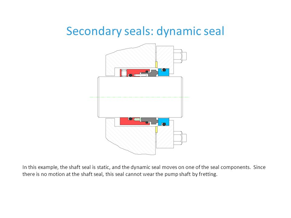 Secondary seals: dynamic seal