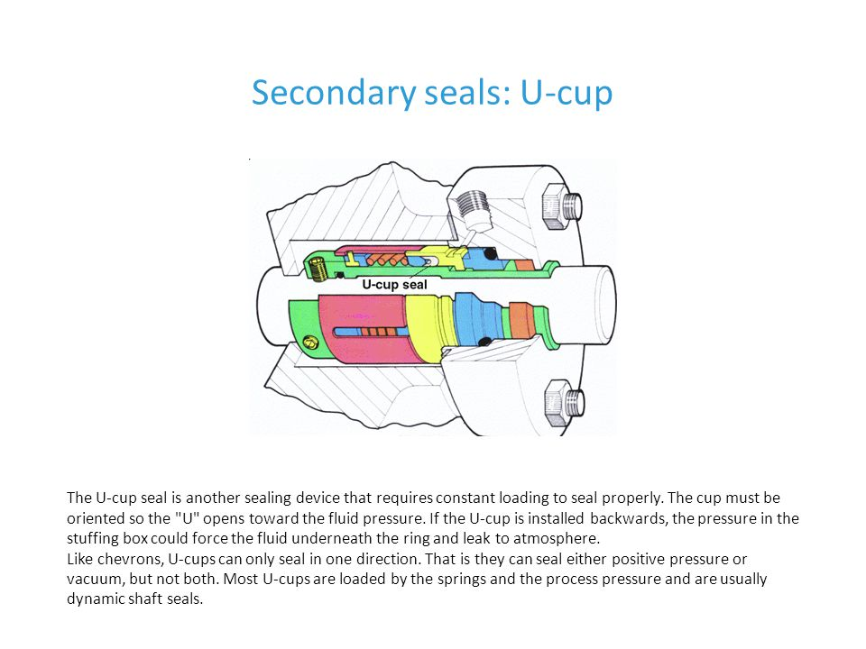 Secondary seals: U-cup