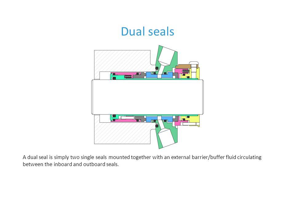 Dual seals