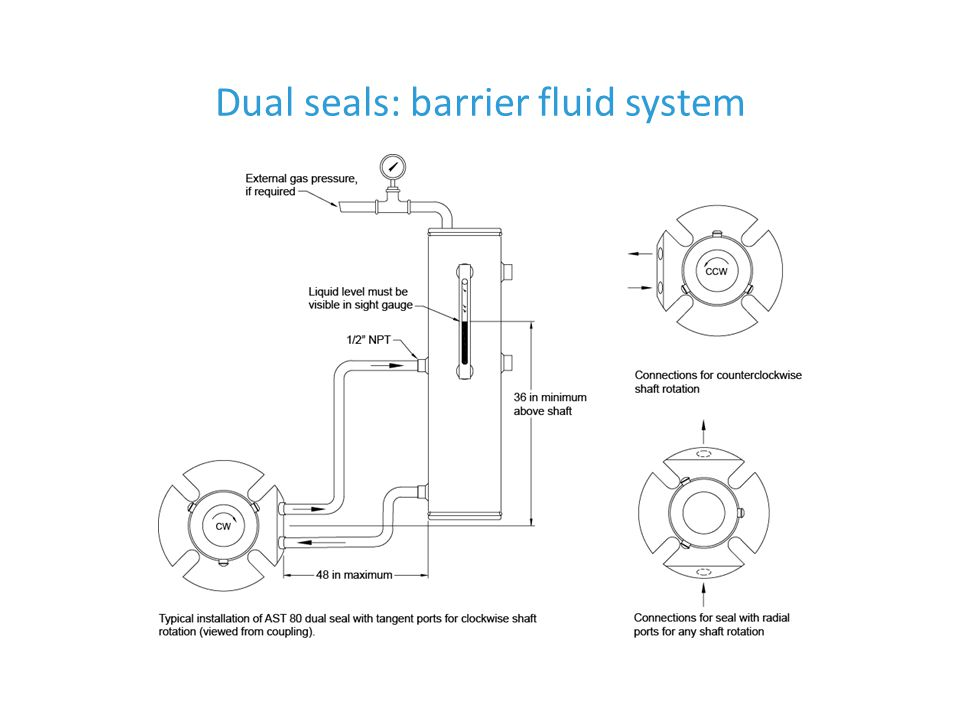 Dual seals: barrier fluid system