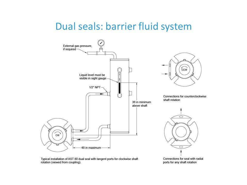 Dual seals: barrier fluid system