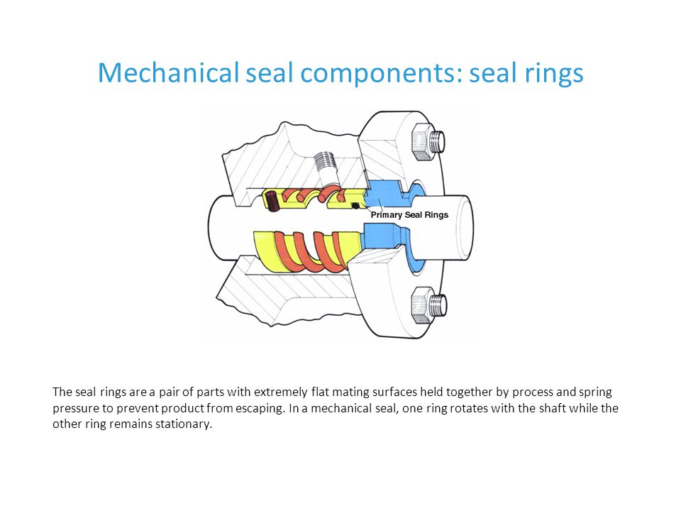 Mechanical seal components: seal rings