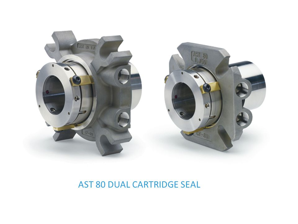 AST 80 DUAL CARTRIDGE SEAL