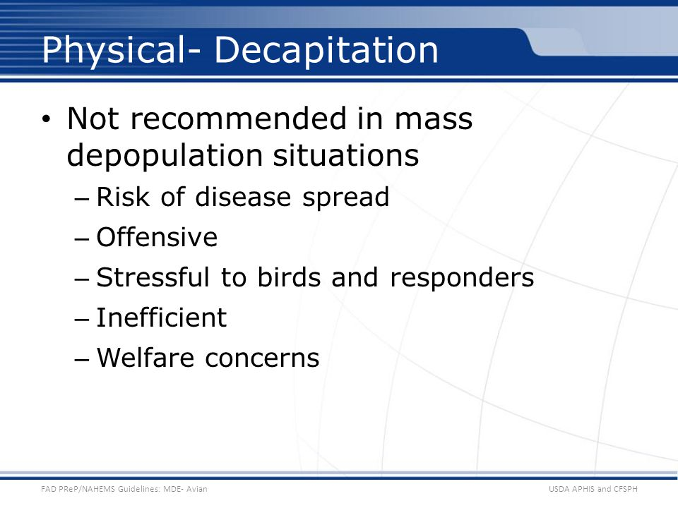 Physical- Decapitation