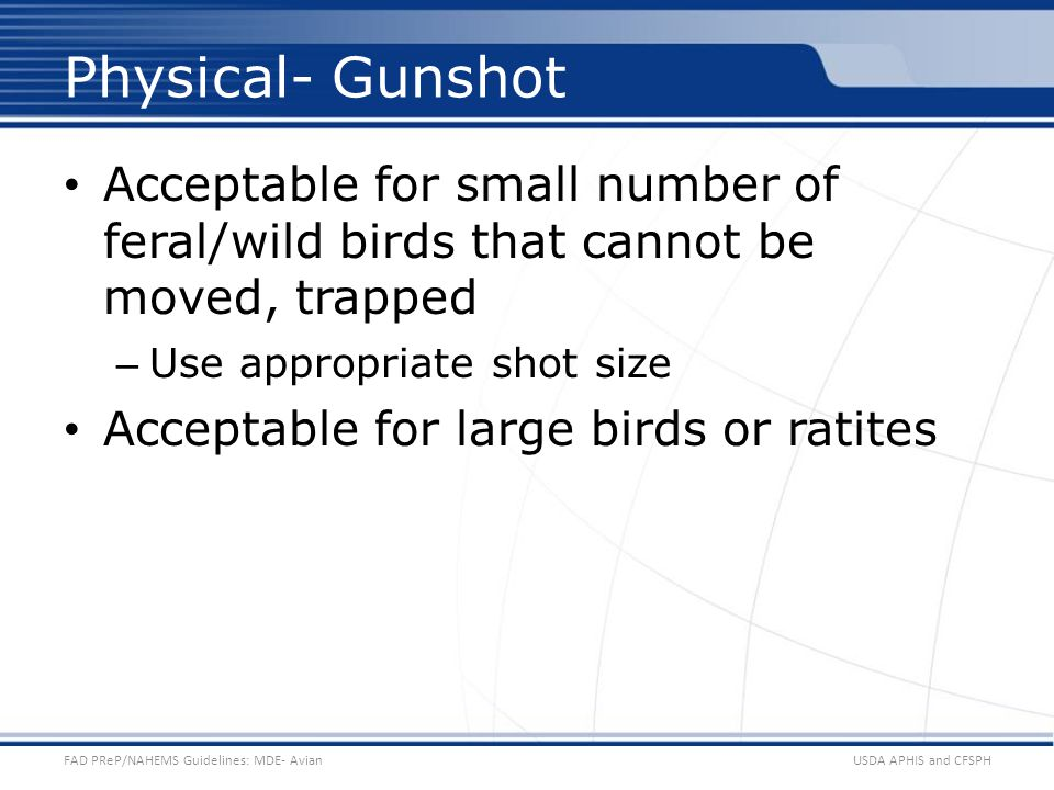 Physical- Gunshot Acceptable for small number of feral/wild birds that cannot be moved, trapped. Use appropriate shot size.