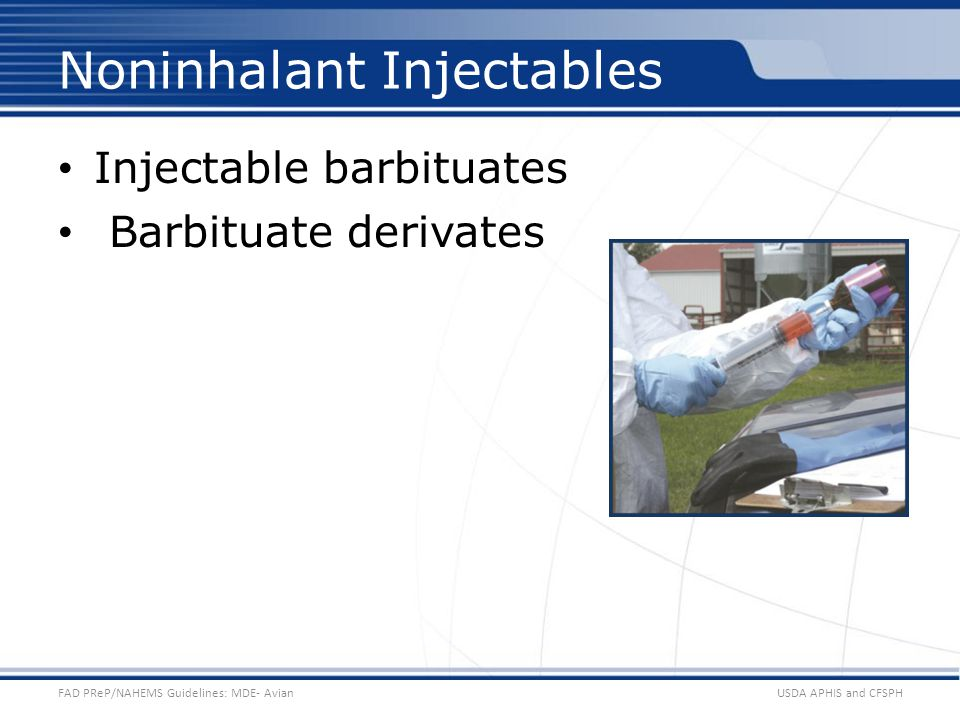 Noninhalant Injectables