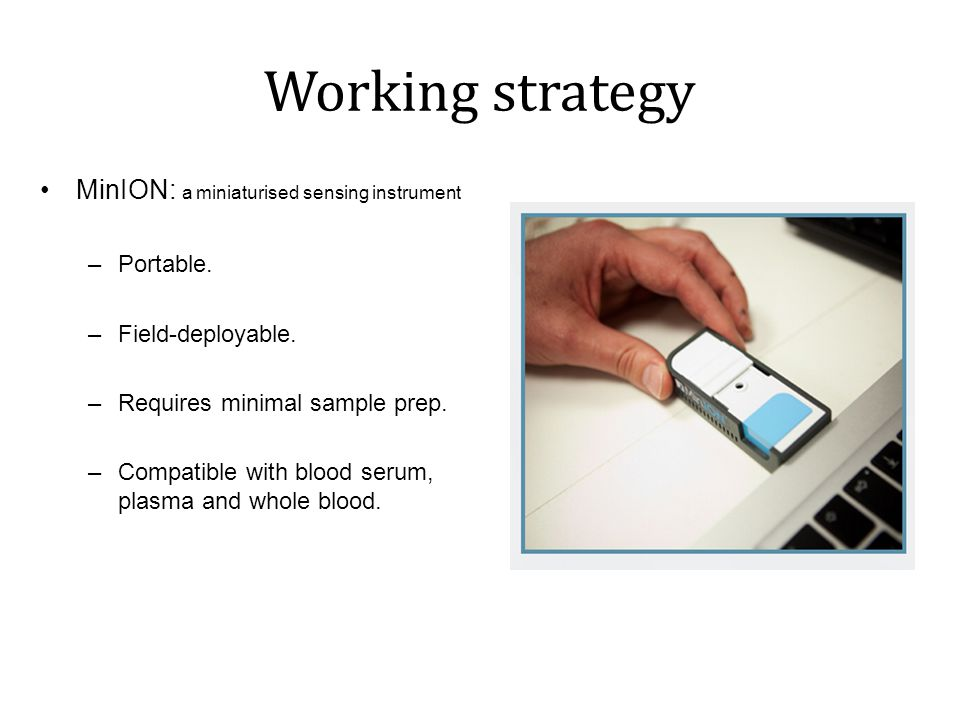 Working strategy MinION: a miniaturised sensing instrument Portable.