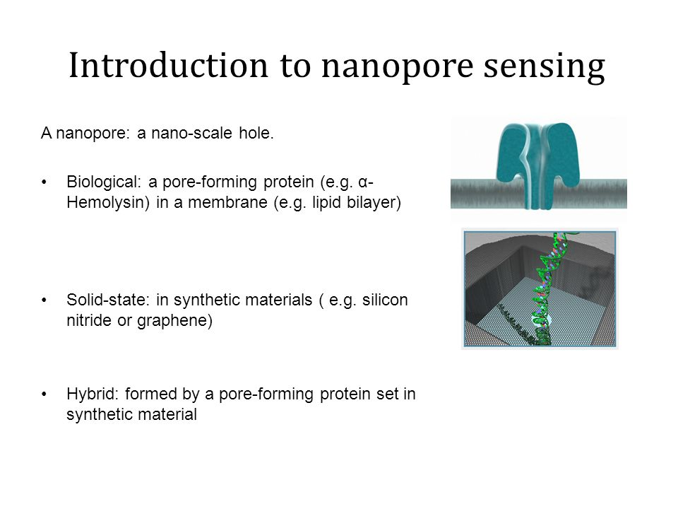 Introduction to nanopore sensing