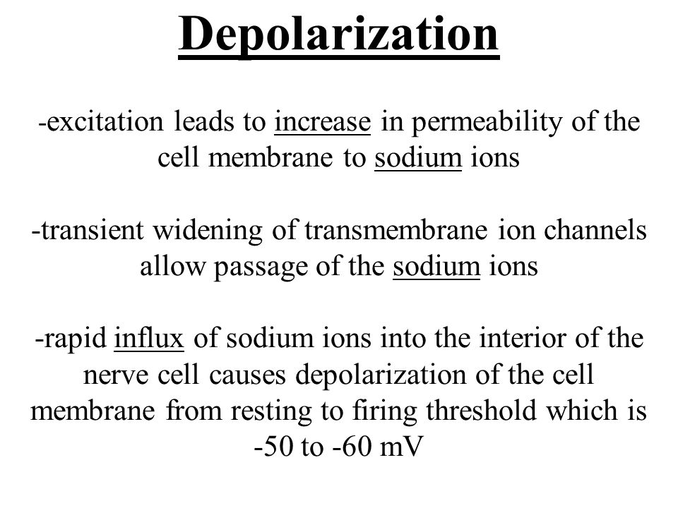Depolarization -excitation leads to increase in permeability of the cell membrane to sodium ions -transient widening of transmembrane ion channels allow passage of the sodium ions -rapid influx of sodium ions into the interior of the nerve cell causes depolarization of the cell membrane from resting to firing threshold which is -50 to -60 mV