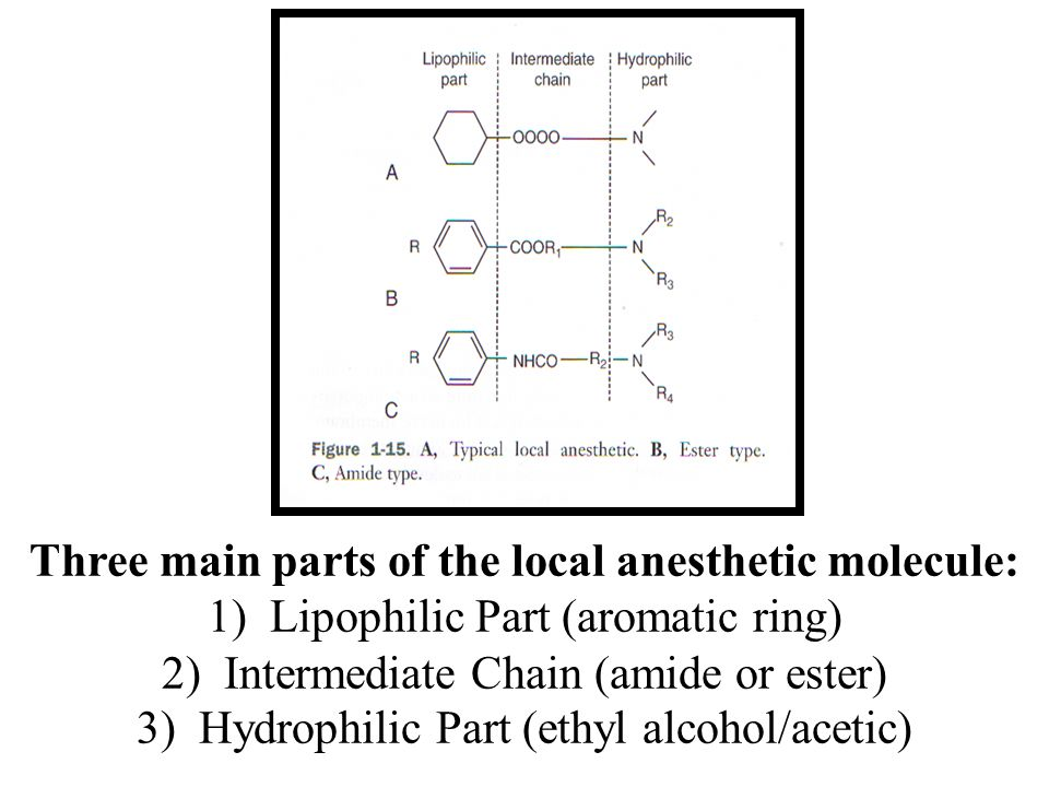 Three main parts of the local anesthetic molecule: 1) Lipophilic Part (aromatic ring) 2) Intermediate Chain (amide or ester) 3) Hydrophilic Part (ethyl alcohol/acetic)