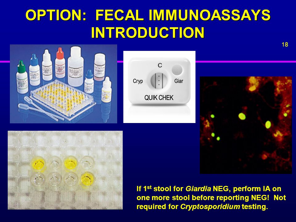 OPTION: FECAL IMMUNOASSAYS INTRODUCTION