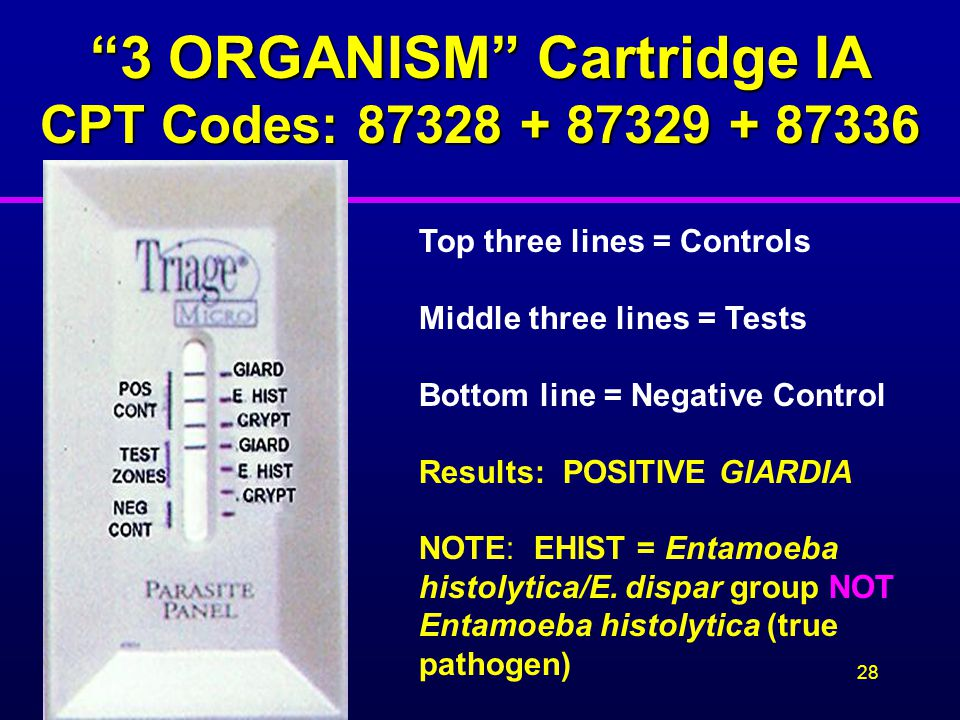 3 ORGANISM Cartridge IA CPT Codes: 87328 + 87329 + 87336