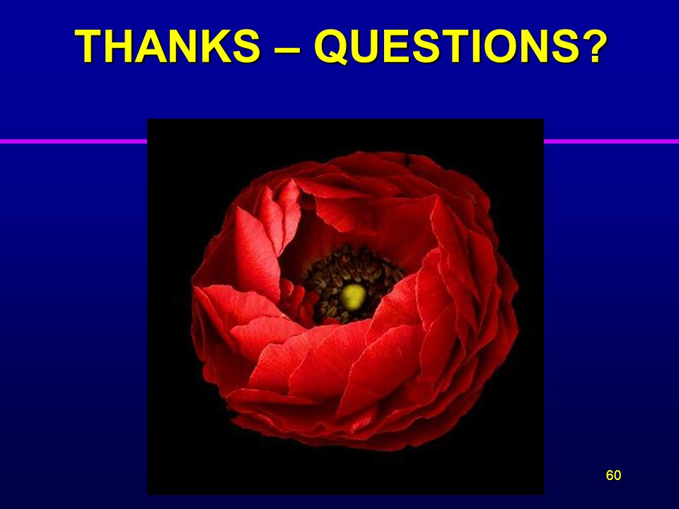 THANKS – QUESTIONS