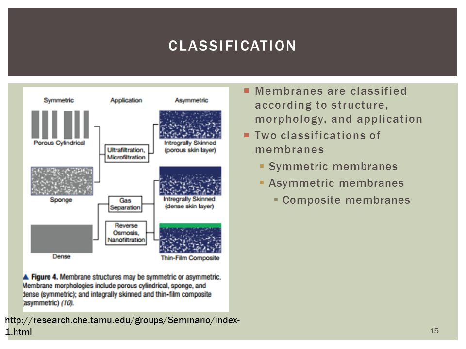 Classification Membranes are classified according to structure, morphology, and application. Two classifications of membranes.