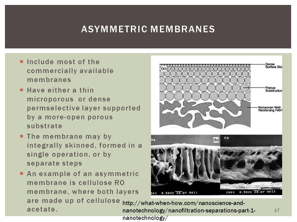 Asymmetric Membranes Include most of the commercially available membranes.