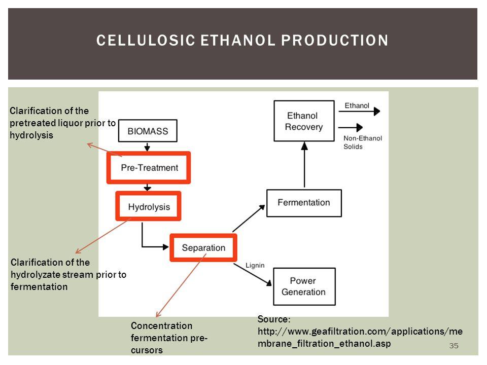 Cellulosic Ethanol Production