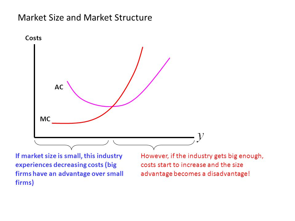 Market Size and Market Structure