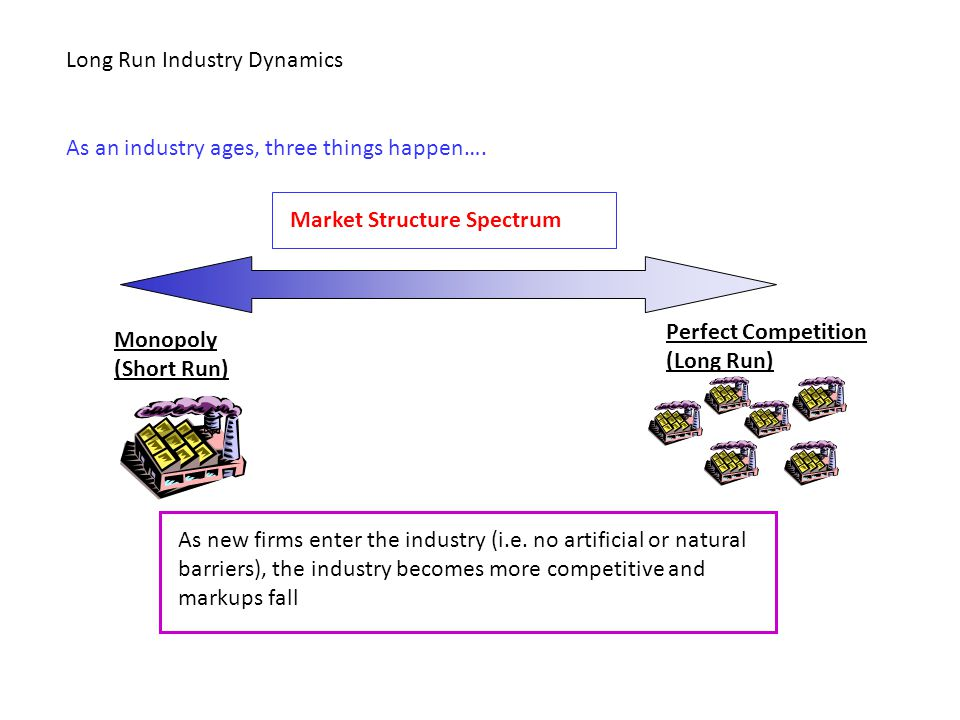 Long Run Industry Dynamics