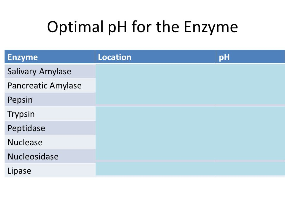 Optimal pH for the Enzyme