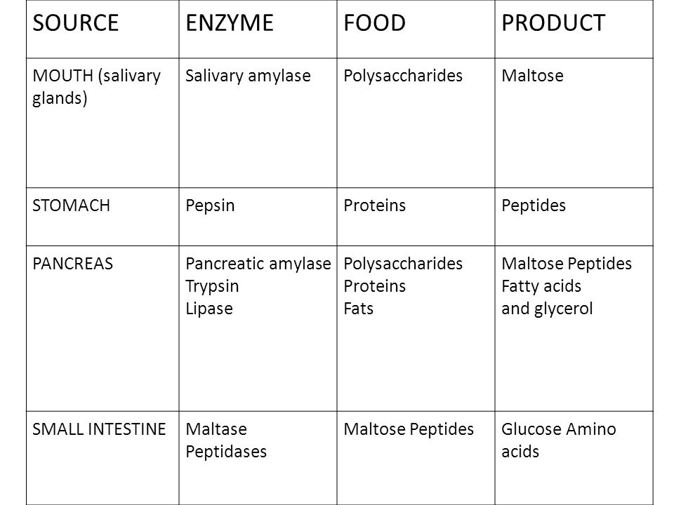 SOURCE ENZYME FOOD PRODUCT MOUTH (salivary glands) Salivary amylase