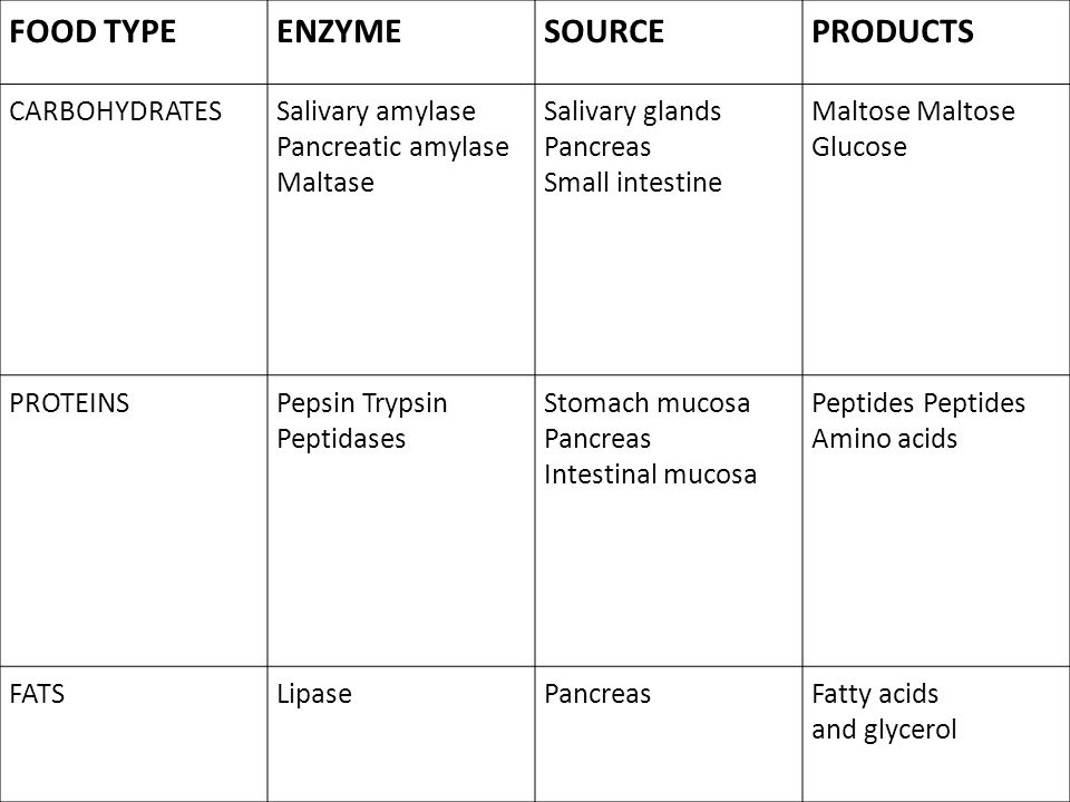 FOOD TYPE ENZYME SOURCE PRODUCTS CARBOHYDRATES