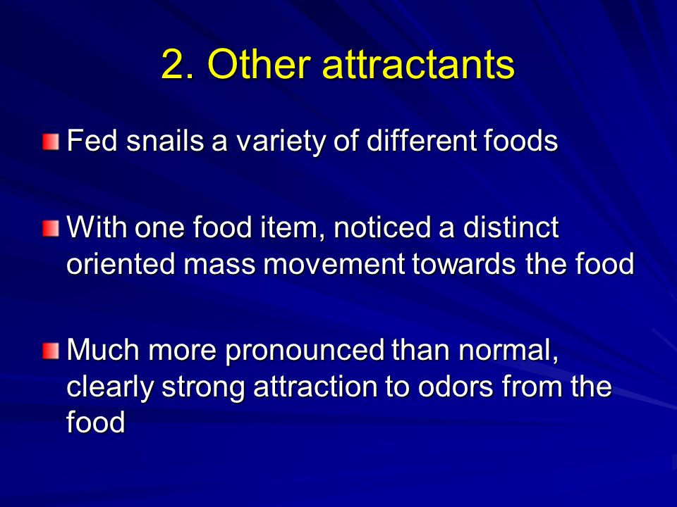 2. Other attractants Fed snails a variety of different foods