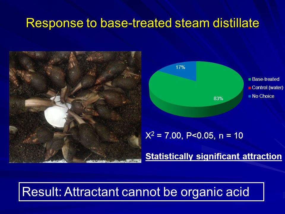 Response to base-treated steam distillate