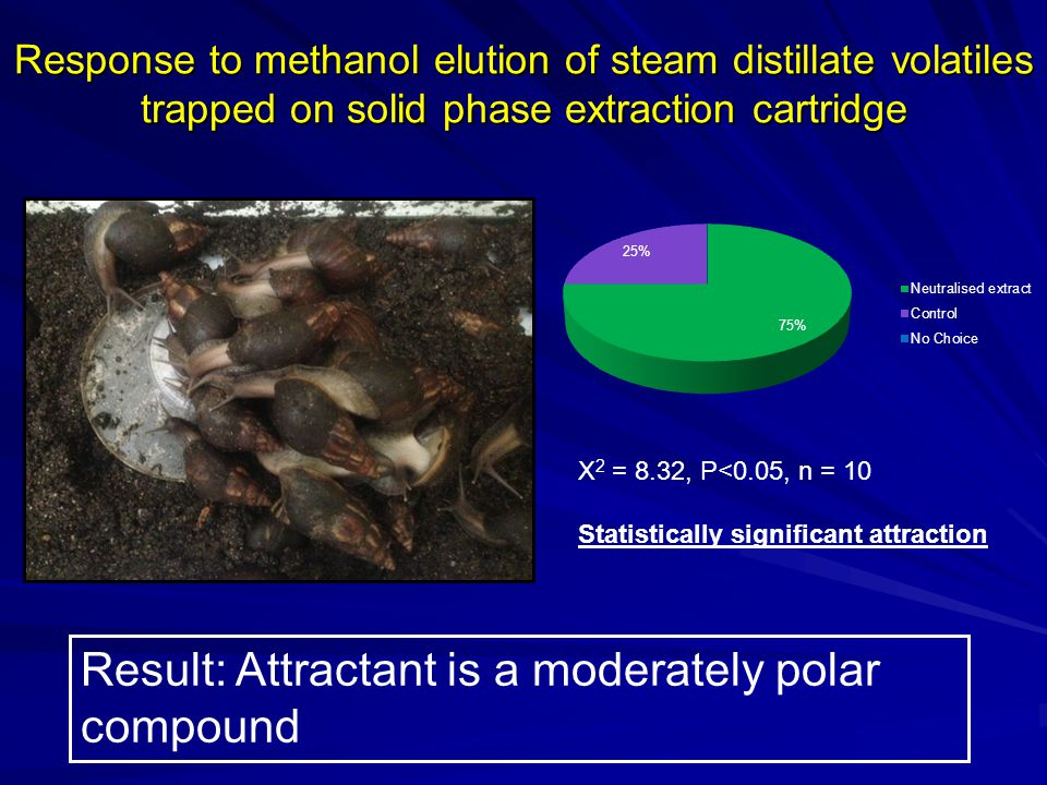 Result: Attractant is a moderately polar compound