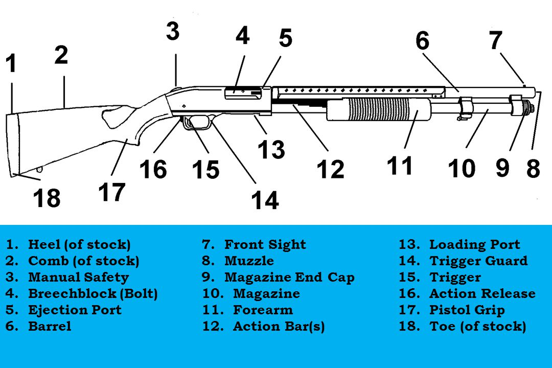 1. Heel (of stock) 7. Front Sight 13. Loading Port