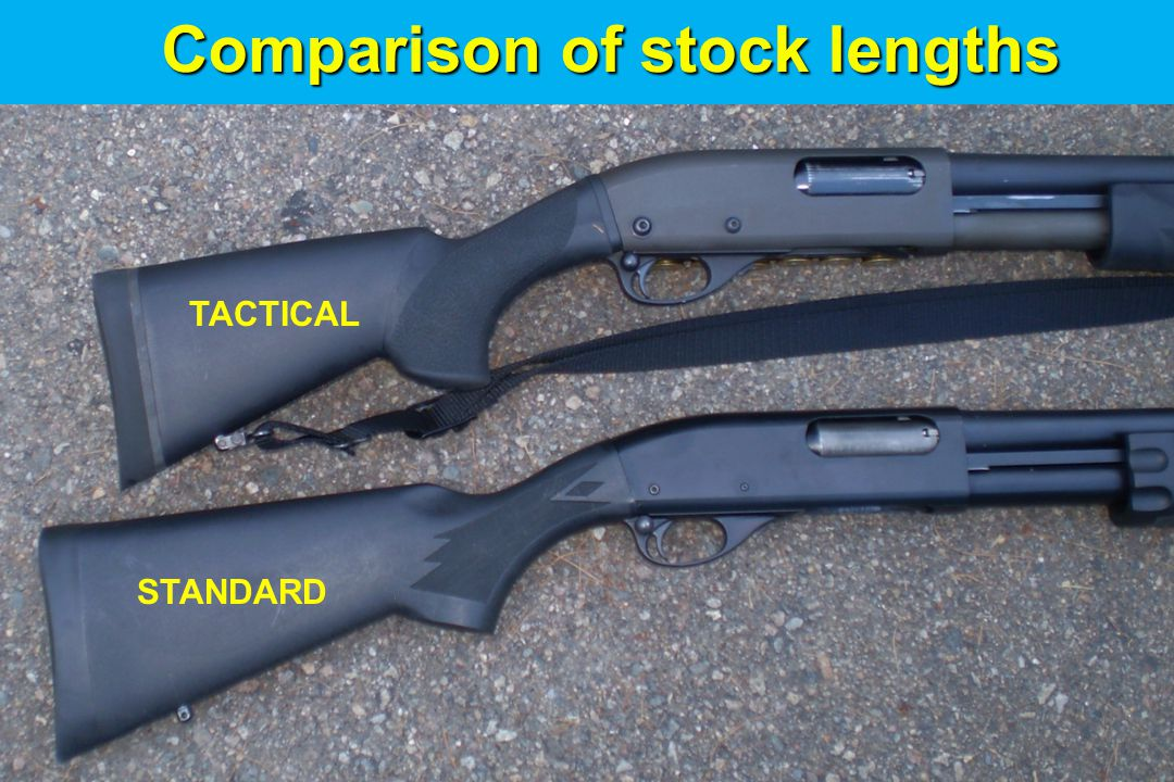 Comparison of stock lengths
