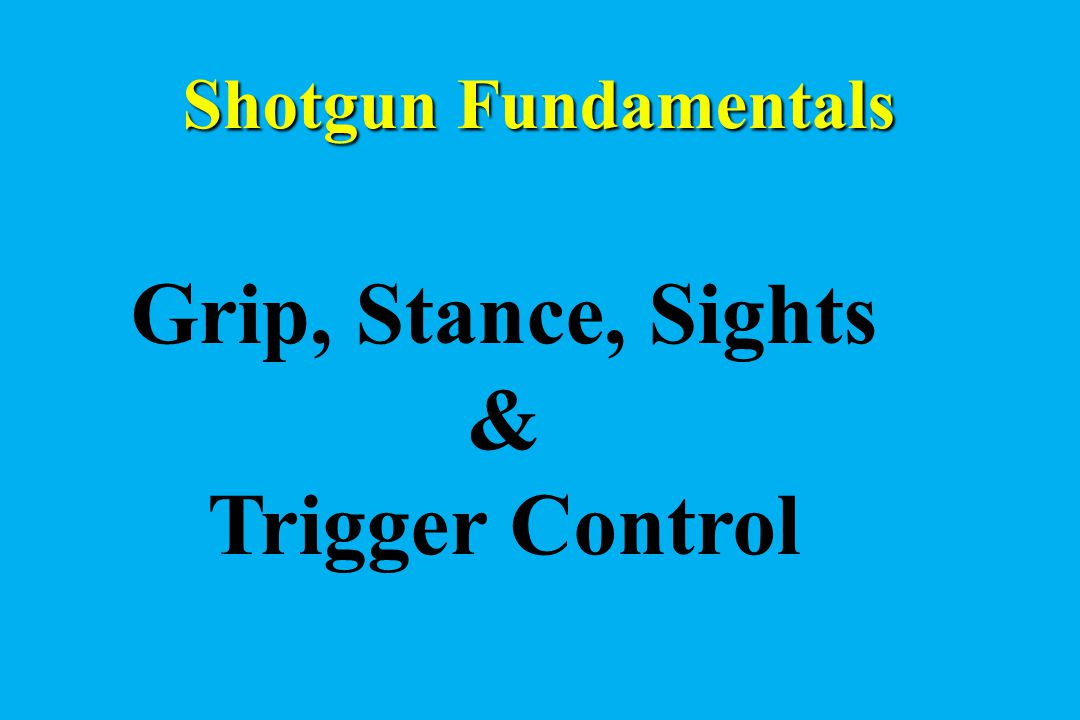 Grip, Stance, Sights & Trigger Control