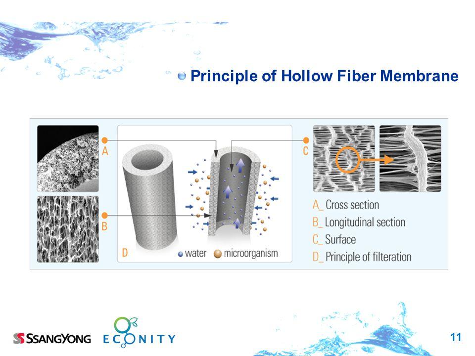 Principle of Hollow Fiber Membrane