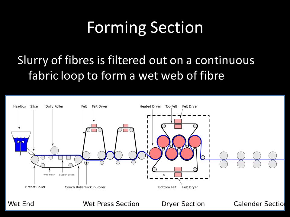 Forming Section Slurry of fibres is filtered out on a continuous fabric loop to form a wet web of fibre.