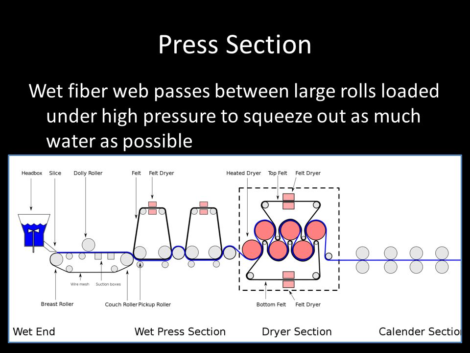 Press Section Wet fiber web passes between large rolls loaded under high pressure to squeeze out as much water as possible.