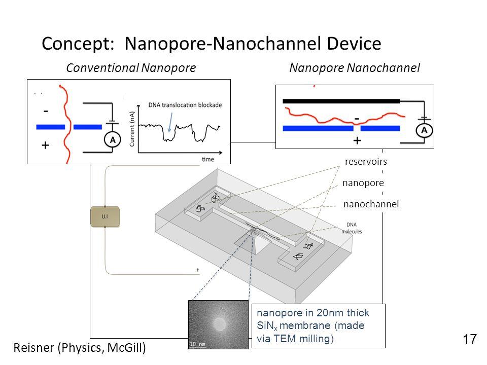 Concept: Nanopore-Nanochannel Device