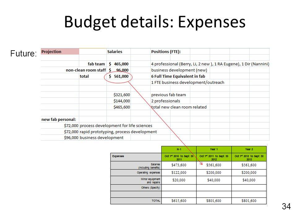 Budget details: Expenses
