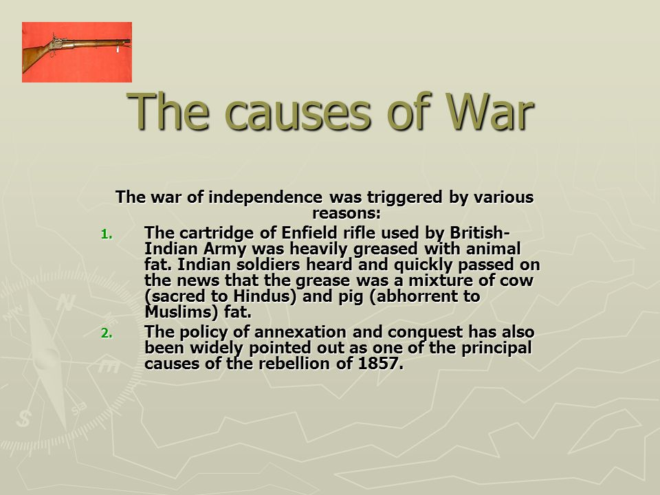 The war of independence was triggered by various reasons: