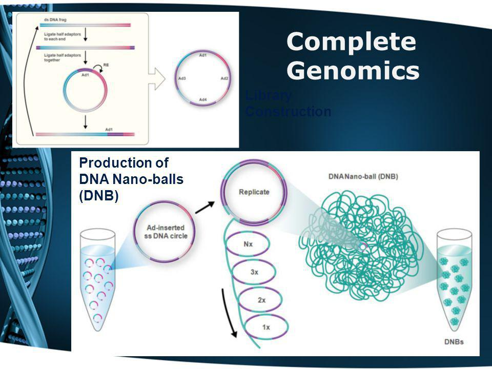 Complete Genomics Library Construction