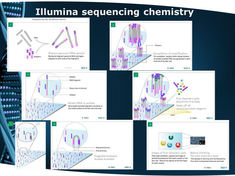 Illumina sequencing chemistry