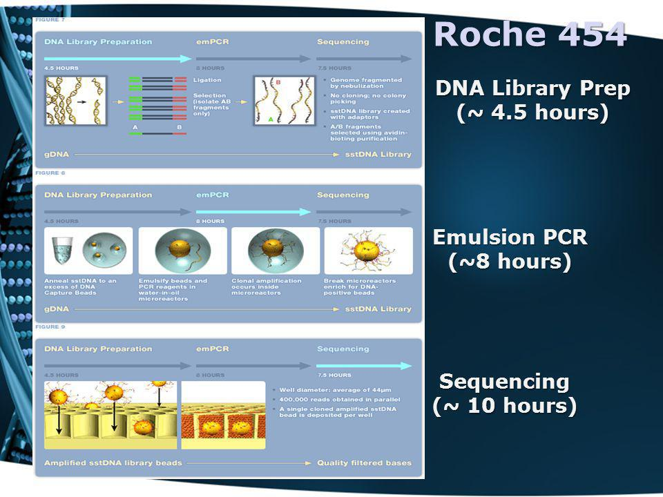 DNA Library Prep (~ 4.5 hours)